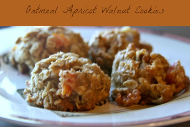 Oatmeal Apricot Walnut Cookies,Easy Cookie Recipe,Theresa Huse 2013-1034