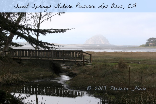 travel-Sweet Springs Nature Preserve, Los Osos,CA Theresa Huse 2013
