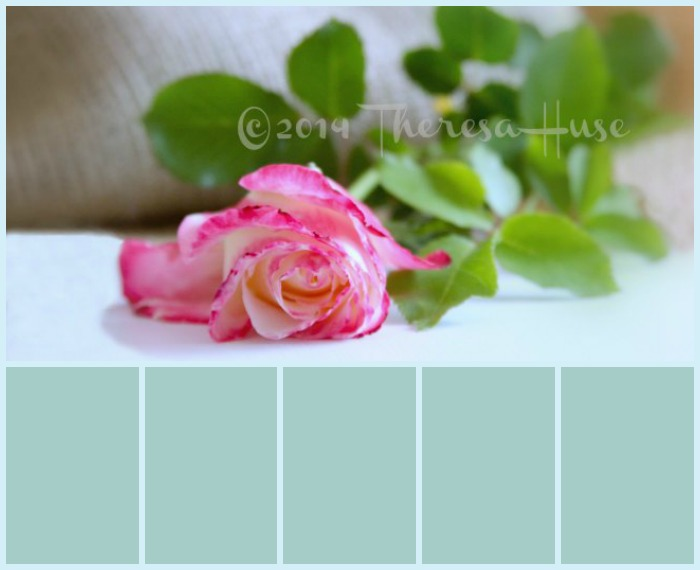 color palette with PicMonkey Collage
