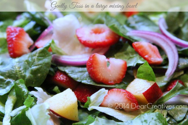 Salad Gently Tossed_