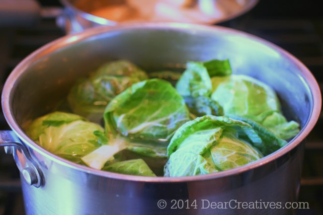 Brussel Spouts cooking in a pot_