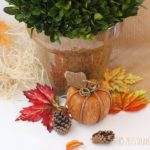 Fall Silk Plant DIY this is a fun and easy craft DIY that anyone can do for their fall home decor