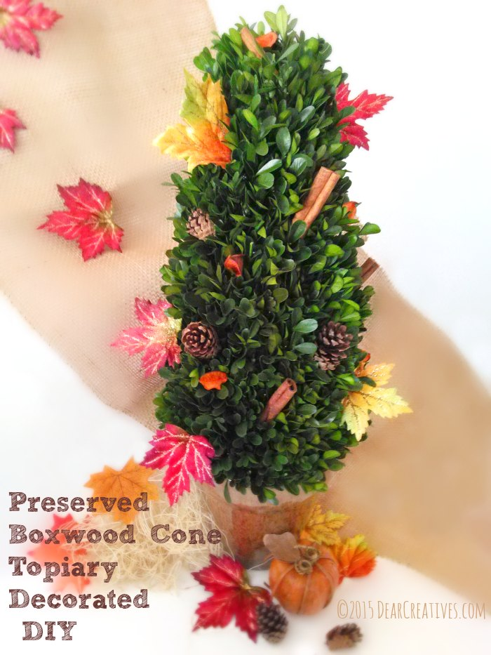 Preserved Boxwood Cone Topiary Decorated DIYIMG_20151008_132956