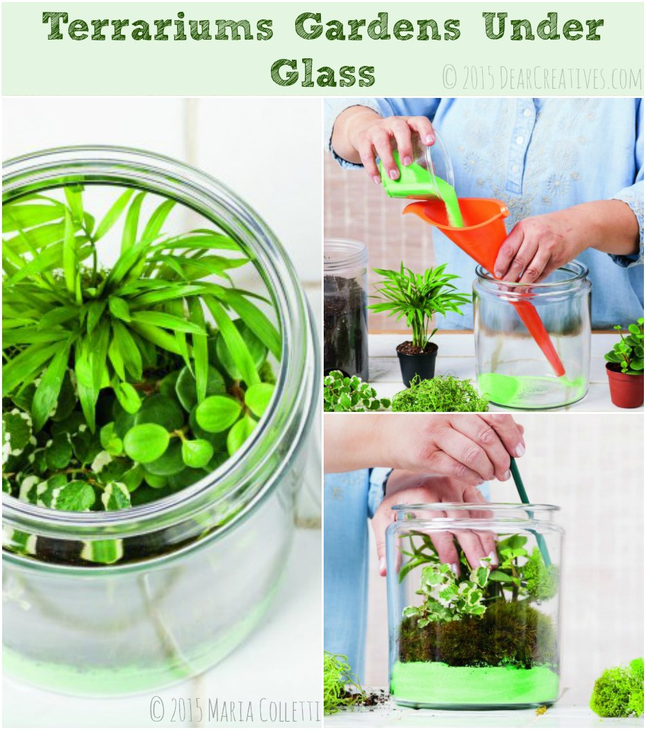 DIY Resource! Learn How to Make Terrarium Gardens Under Glass