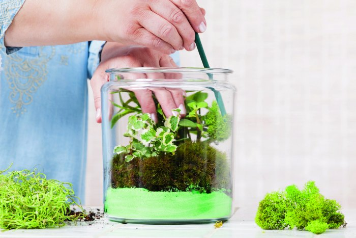 terrariums Gardens Under Glass diy terrariums
