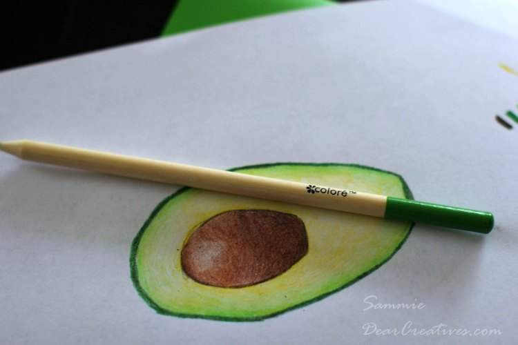 Drawing of an avocado with colored pencils | How to draw with color pencils