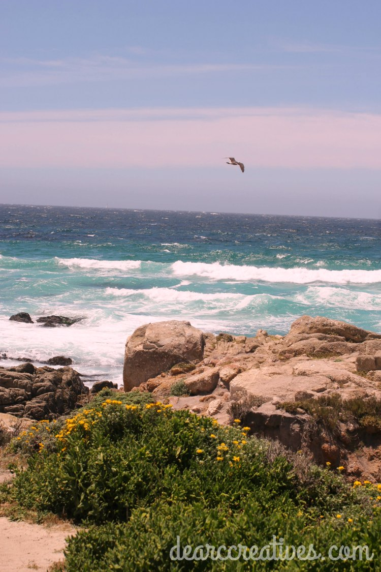 Travel | Carmel, Ca. | Carmel by the sea