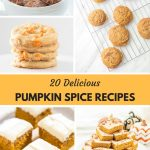 Pumpkin Recipes | Pumpkin Spice Recipes | A roundup of some of the most delicious pumpkin recipes which includes pumpkin bars, pumpkin cookies, pumpkin bread, pumpkin blondies, pumpkin cheesecakes and more treats.