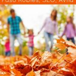 Top 5 Fun things to do Central, Calfornia in the fall. You'll love these family friendly travel ideas insider tips for traveling Calfornia. DearCreatives.com
