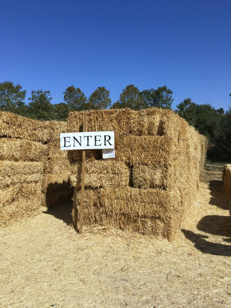 Hay Mazes are just some of the fun things to do in Avlia. Find out more DearCreatives.com