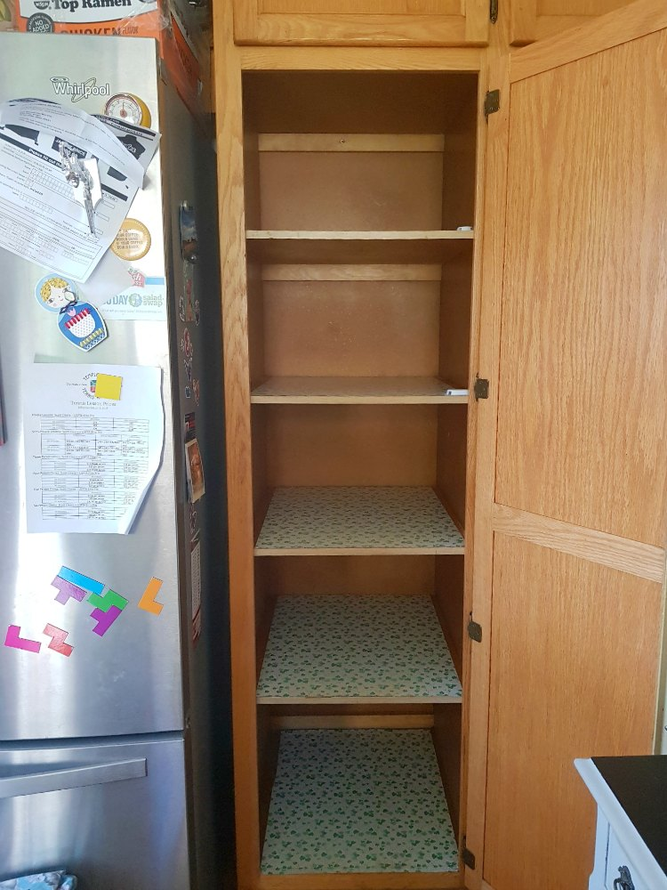 Empty Pantry ready to be cleaned
