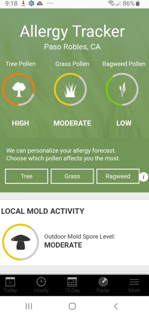 Snapshot of Pollen Count for Paso Robles, California taken on cell phone - DearCreatives.com