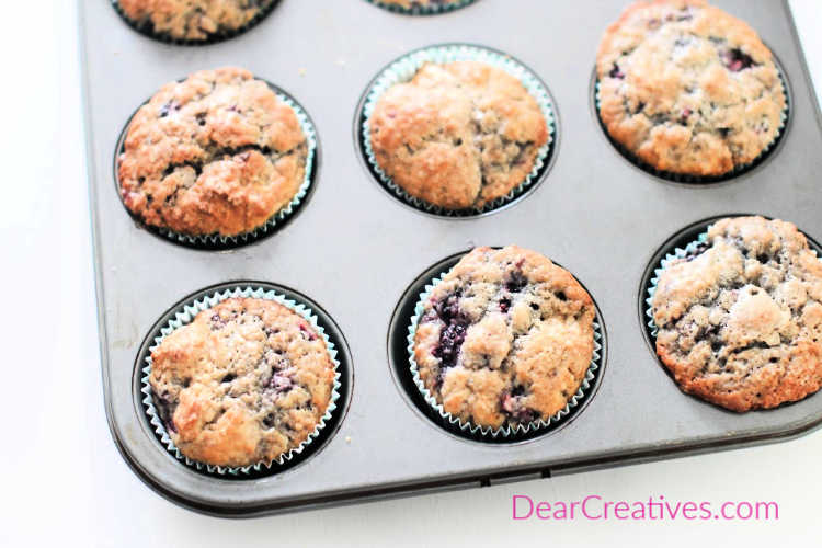 blackberry muffins in muffin pan that just finished baking © Muffin Recipe at DearCreatives.com