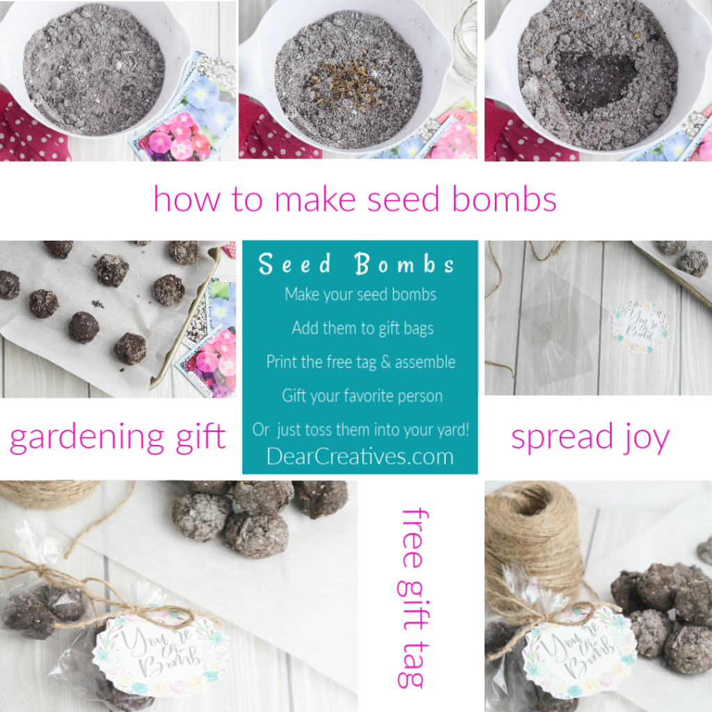 how to make seed bombs - DearCreatives.com steps in images full tutorial at DearCreatives.com