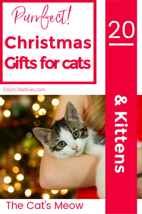 Christmas Gifts For Cats – The Cat's Meow!