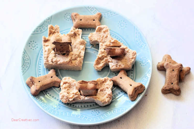Frozen dog treats - dog treats on a plate ready for the dogs - DearCreatives.com