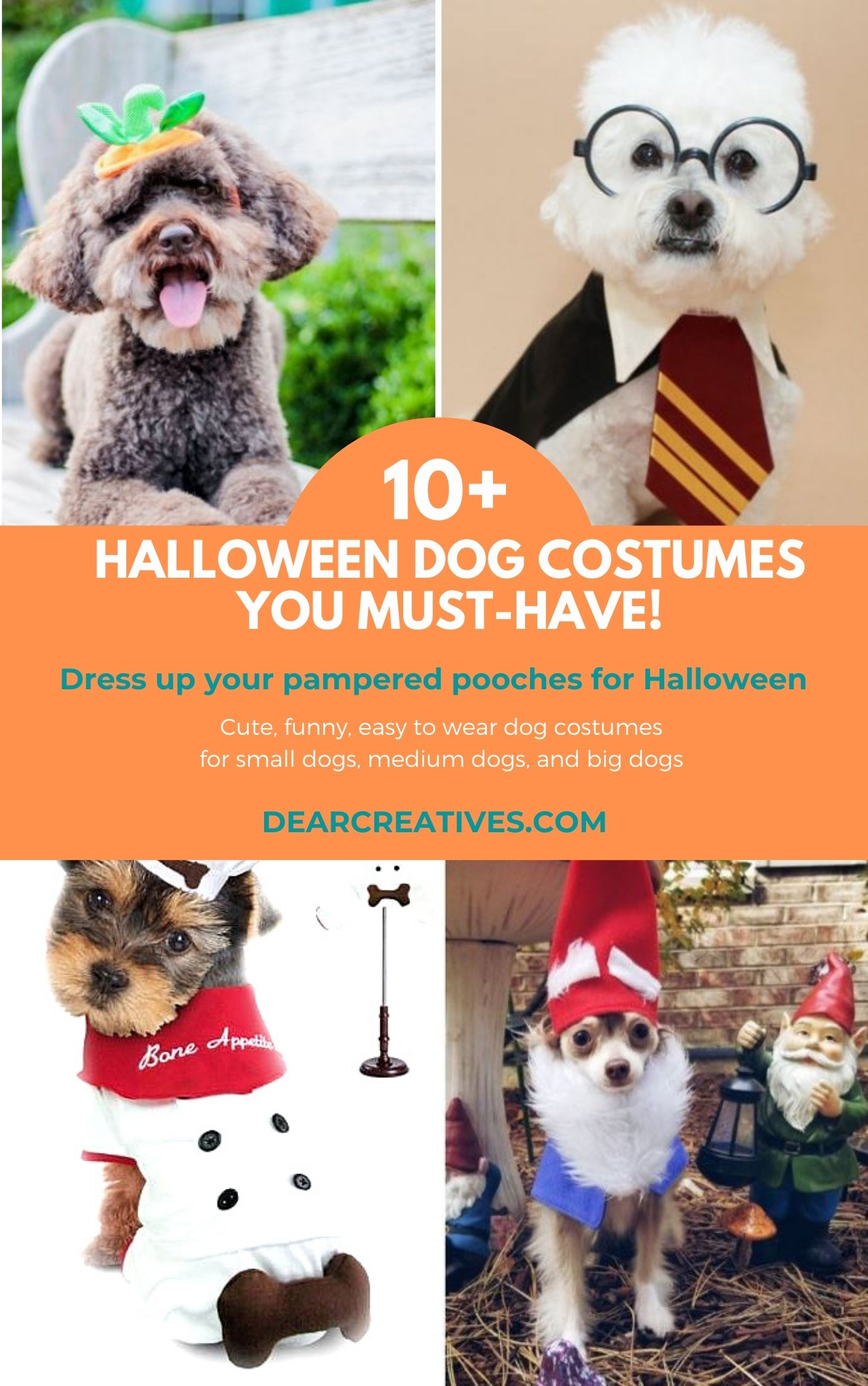 Halloween Dog Costumes You & Your Dogs Will Love!