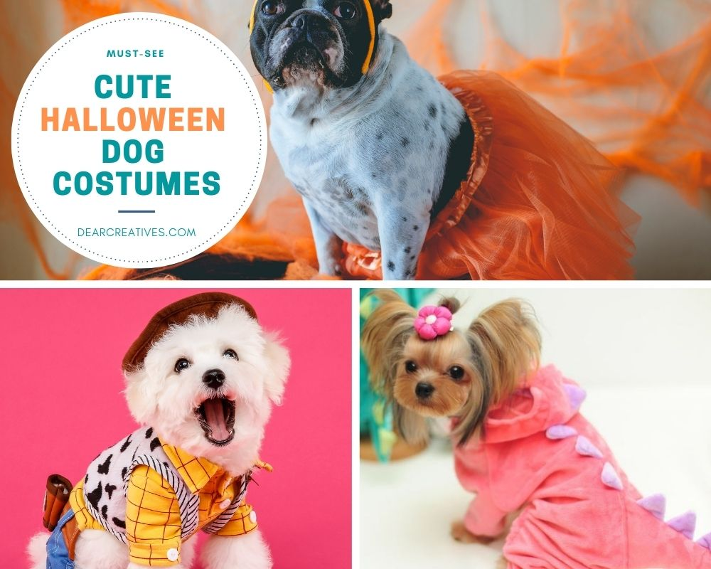 Halloween-Dog-Costumes-Costume-ideas-for-dogs-These-costumes-for-dogs-are-awesome.-See-them-all...-DearCreatives.com-